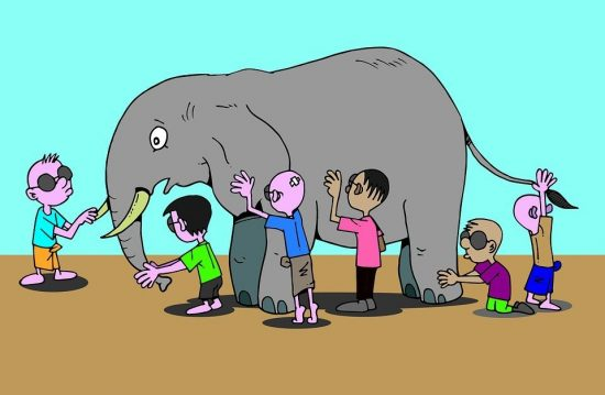 Why kids should read animal stories?